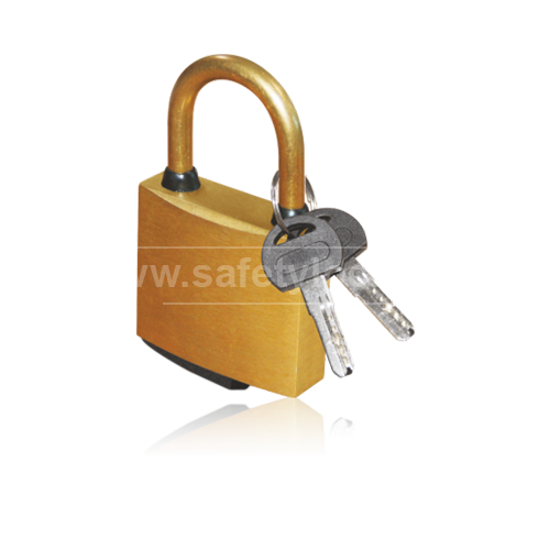 E-Square Alliance - Brass Lockout Padlock  with 6 mm Shackle